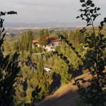 Vista del Paretaio 5